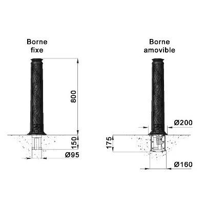 P-borne-evolution.jpg#asset:9147