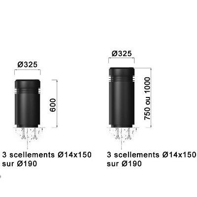 P-borne-urbino-B6_B7.jpg#asset:9172