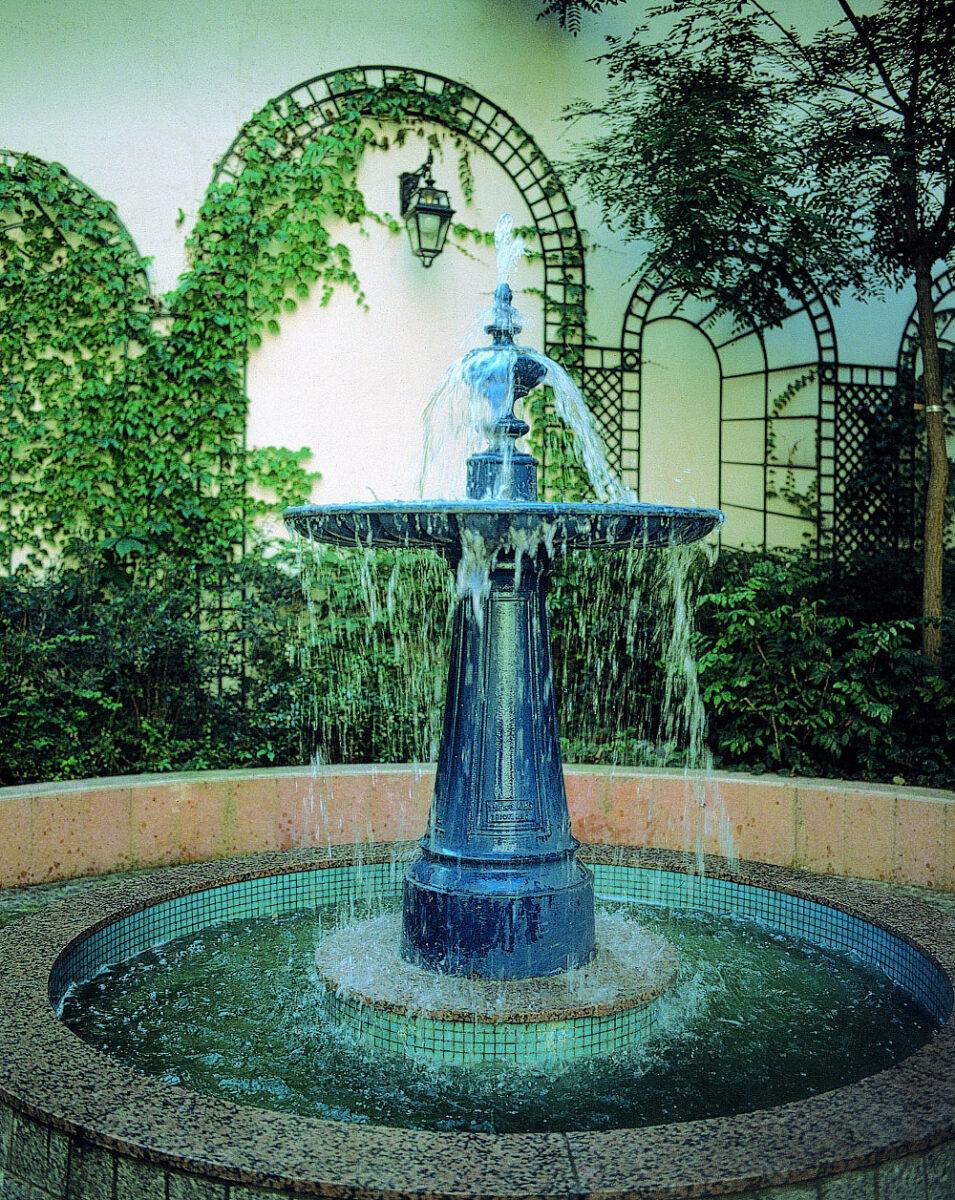 Im Fontaine Montier En Der 10 1