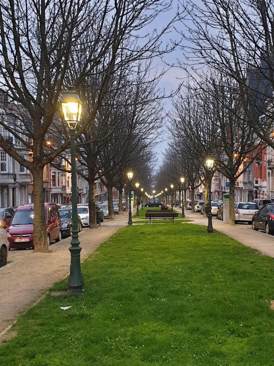 Beauregard 1 , Brussel