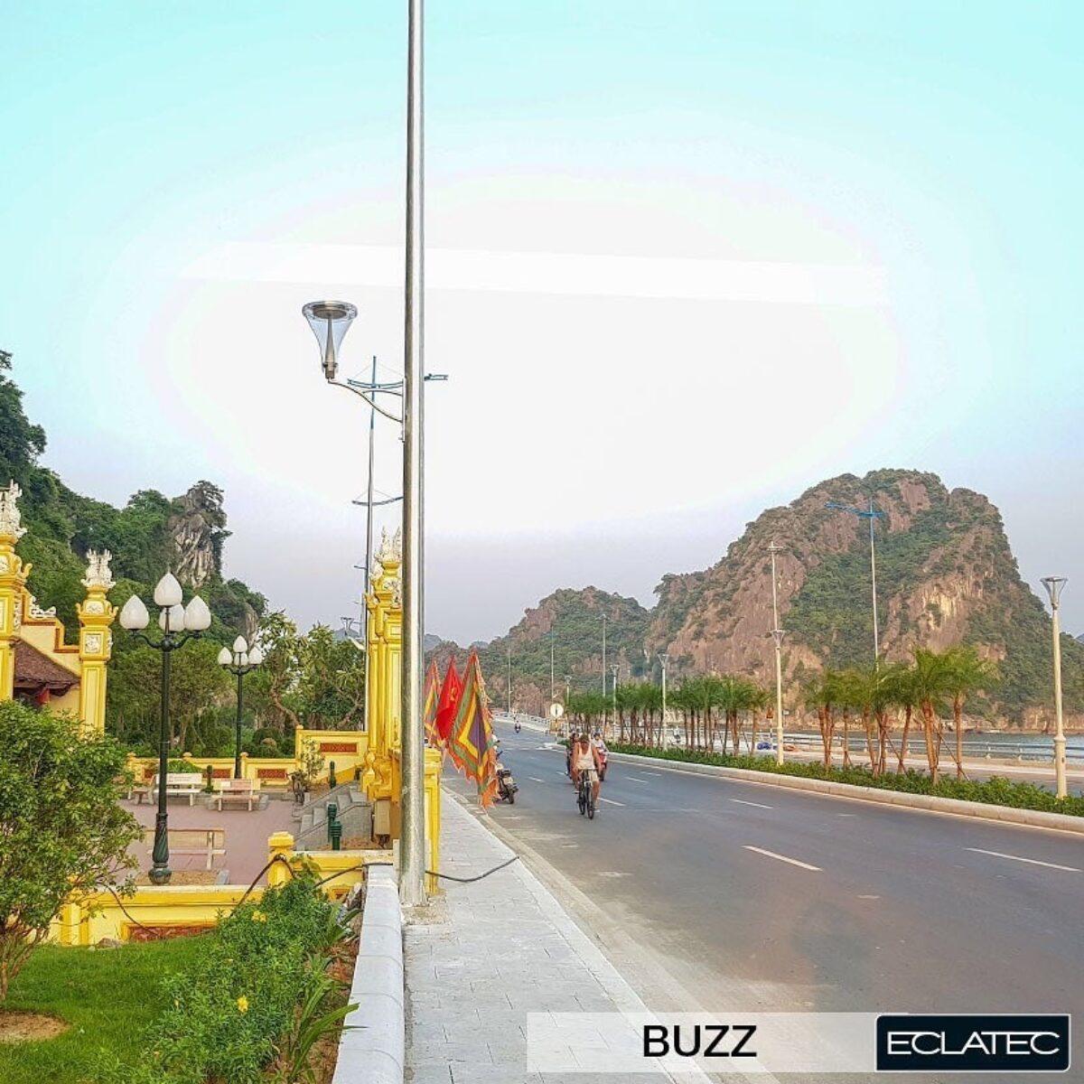 Buzz 4 Vietnam